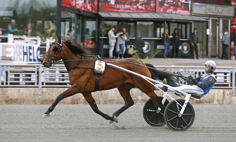 Alaska Kronos tog årets andra raka seger när hon på tisdagen tog hem Första Testet Stochampionatet på Axevalla. Maria Holmén/TR Bild.
