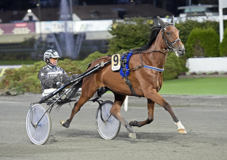 - Cherry Oh Baby tränar som en vinnare, säger Åke Lindblom.