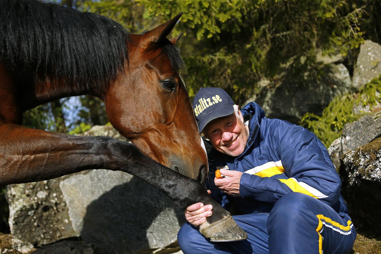 Stefan Melanders Disco Volante fick innerspår i finalen av Paralympiatravet. Maria Holmén TR Bild.