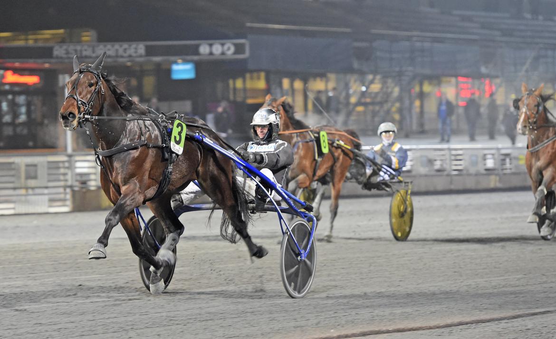 Hail Mary utklassade motstndet när han tog sin femte raka seger i Umeå (arkivbild). Lars Jakobsson/TR Bild.