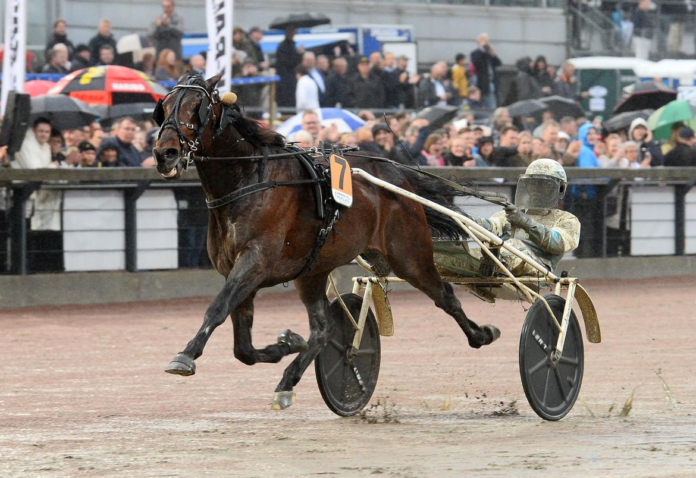 Propulsion vid fjolårssegern i Olympiatravet. Lars Jakobsson/TR Bild.