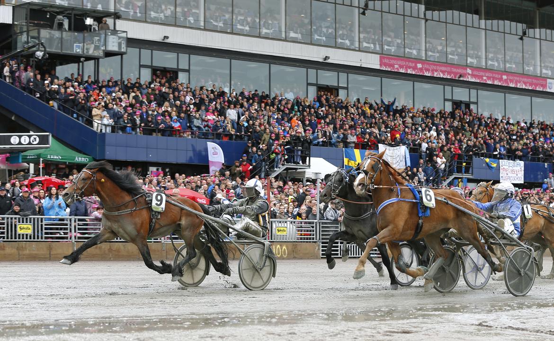 Regerande mästaren Tangen Haap är klar för Elitkampen. Maria Holmén/TR Bild.