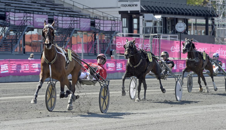 Jefferson Dotcom är ny speedkung på Solvalla. Lars Jakobsson TR Bild.