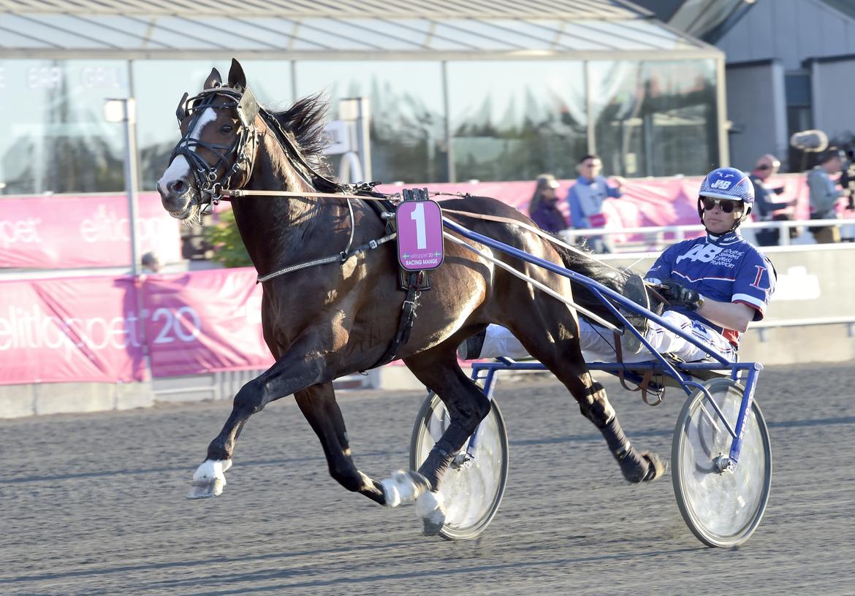 Titelförsvararen Racing Mange lottades till spår 8 i lördagens Kymi Grand Prix. Lars Jakobsson TR Bild.