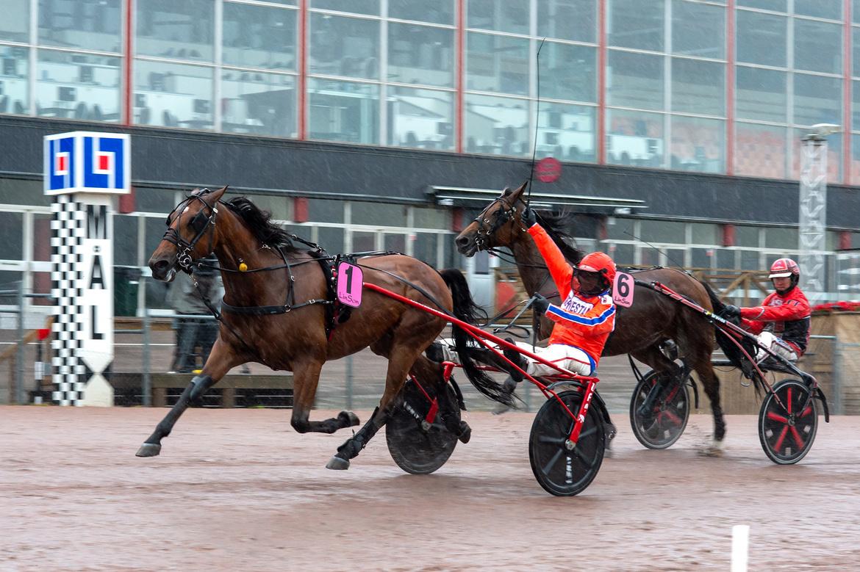 Generaal Bianco chockade spelarna när han på lördagen spurtade hem gulddivisionen hemma i Halmstad. Mikael Rosenquist/TR Bild.