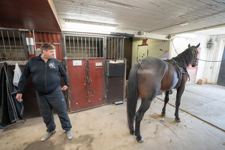 Svante Båth besiktigar en av sina hästar på gården i Knivsta.