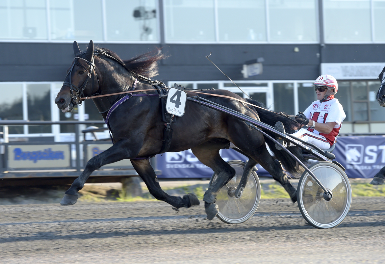 Mjölner Apollo sträcker ut för Per Linderoth. Lars Wikström på Bergsåker tränar.