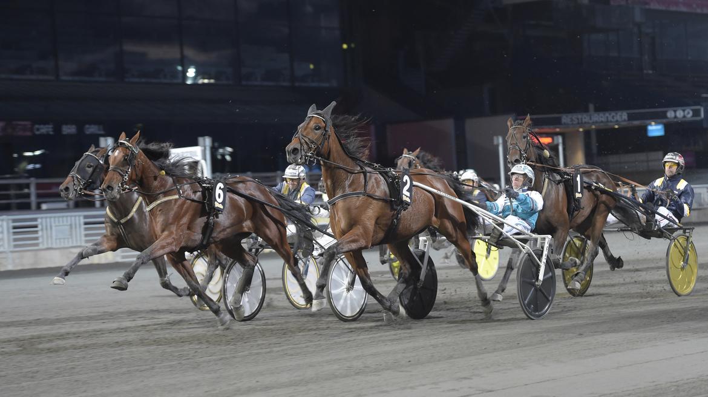 Mellan hästar med stora kliv. André Eklundh skrällde med Queen of Trixs på Solvalla för två veckor sedan då hon speedade ner storfavoriten Golden Tricks och Örjan Kihlström (närmast kameran).