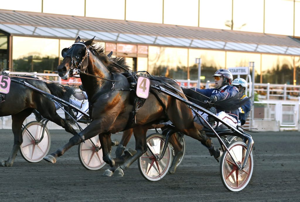 Elegant Ima och Magnus Teien Gundersen vinner lopp på Solvalla i somras.