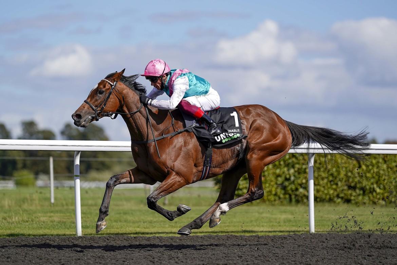 Enable kan bli första häst att vinna Prix de l'Arc de Triomphe tre gånger. Frankie Dettori jagar sin sjunde seger. Scoopdyga.