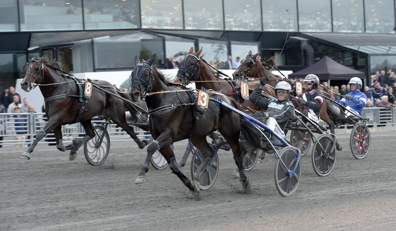 Power vinner Svenskt Travkriterium 2019 med Power.