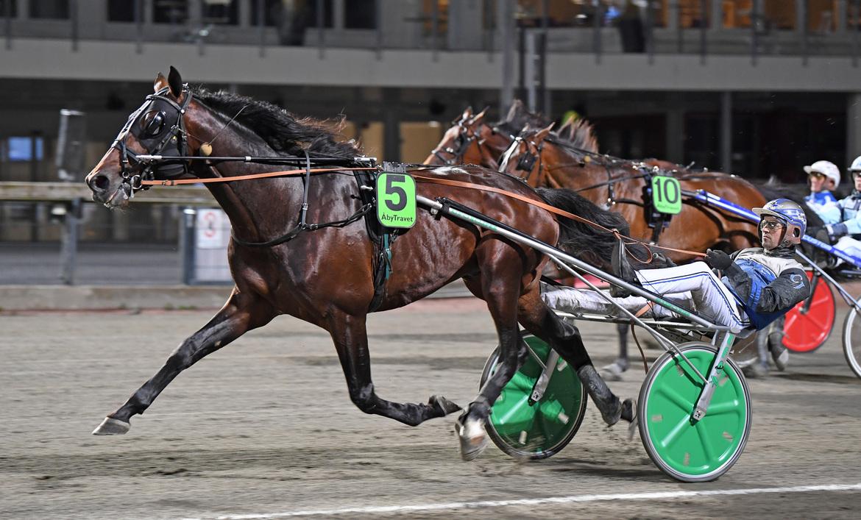 Ad Hoc och Carl Johan Jepson startar i V75-7, Malin Albinsson TR Bild.