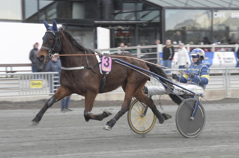 Norske tränaren Trond Anderssen tror mycket på Floris Baldwin som jagar segern i gulddivisionen. TR Bild.