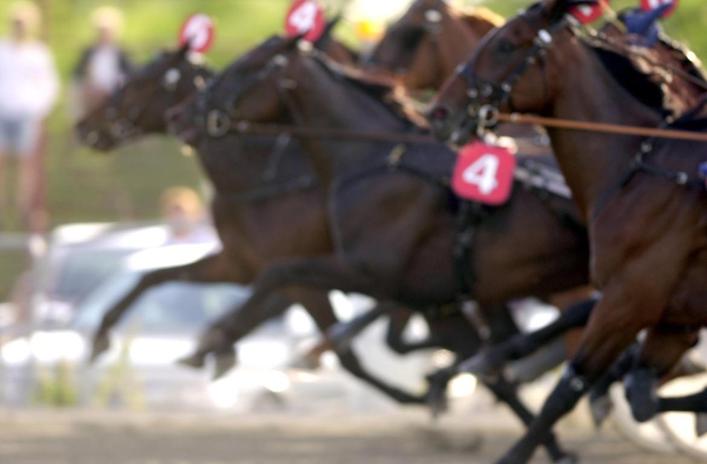 Torsdag den 1 april inleds V75® Spring Race. Upplägget är samma som tidigare år.