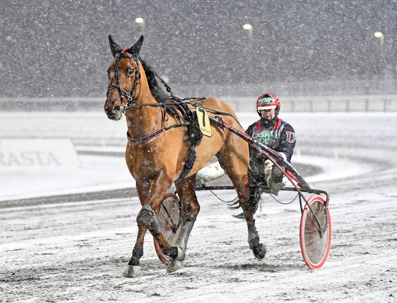 Maestro Crowe i snöyran på Åby tillsammans med sin nye tränare Johan Untersteiner.