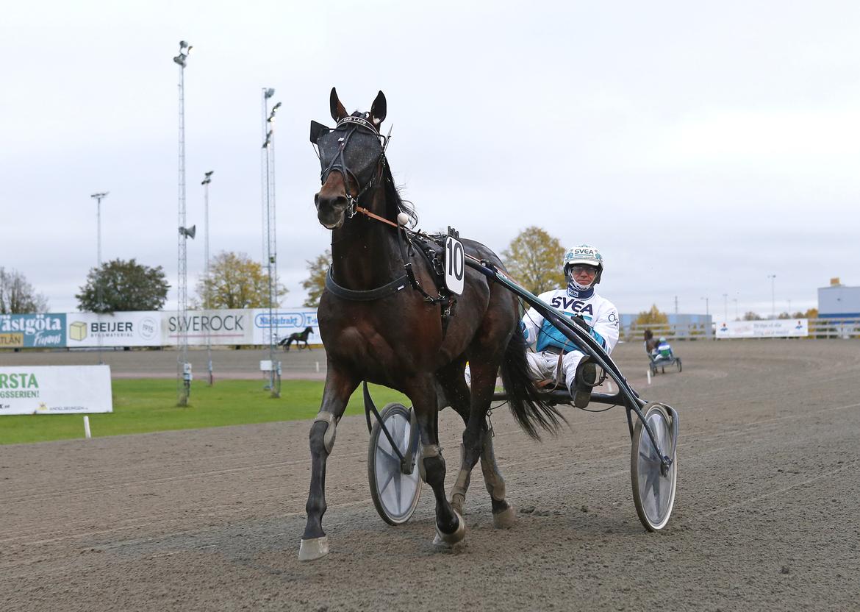Timo Nurmos Cab Lane svarade för en strålande årsdebut på fredagskvällen. Maria Holmén/TR Bild.