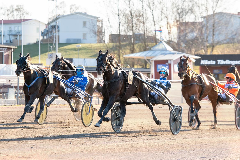 Aetos Kronos imponerade stort när han tog hem den tredje deltävlingen i Paralympiatravet. Mikael Rosenquist/TR Bild.