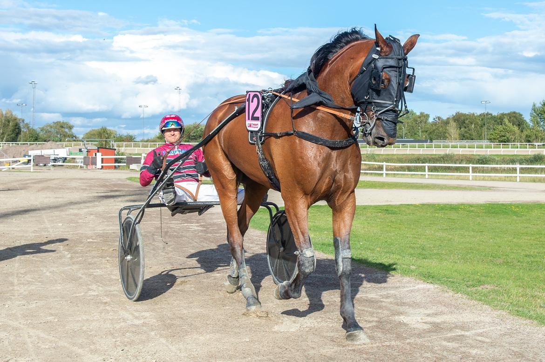 Farlander Am och Johan Svensson. Mikael Rosenquist TR Bild.