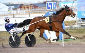 Heavy Sound och Kenneth Haugstad fick spår 1 i Seinäjoki Race. Malin Albinsson TR Bild.
