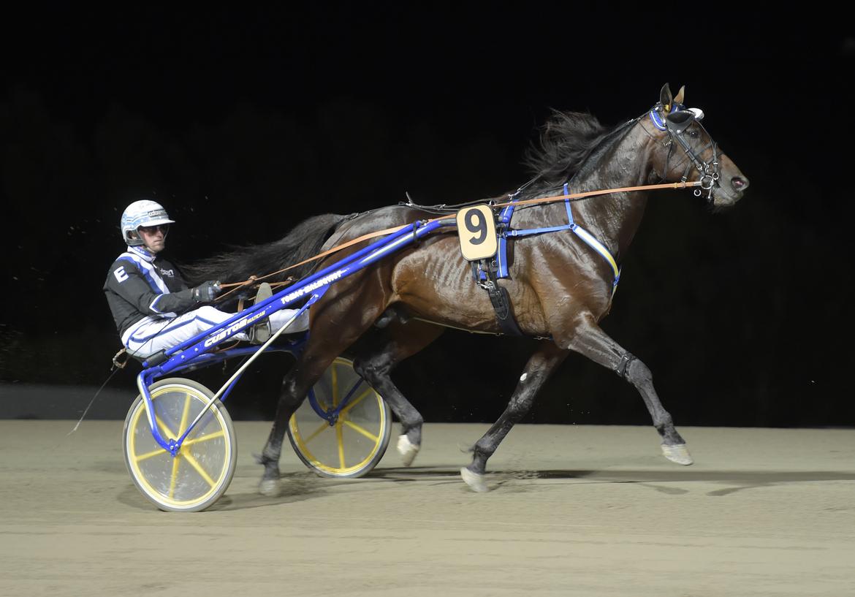 Tomas Malmqvists Calle Crown vann Prix du Rouergue på Vincennes och belönades med 300 000 kronor. Lars Jakobsson, TR Bild.