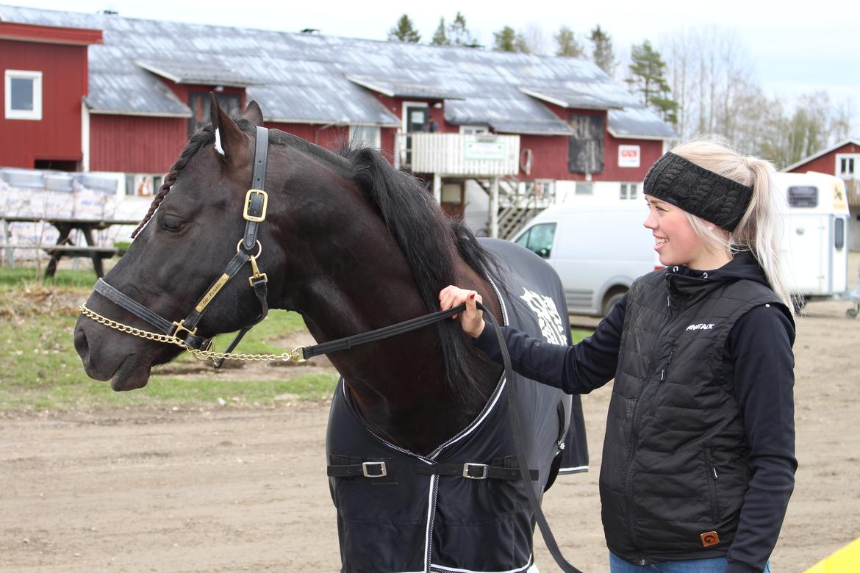Odd Herkles med Sara Norrström som jobbar som hästens skötare under