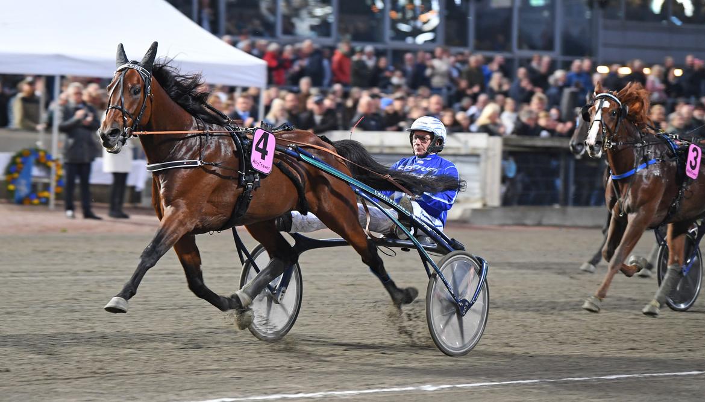 Obesegrade fixstjärnan Calgary Games vann på lördagen Europaderbyt på Åbytravet. Malin Albinsson/TR Bild.